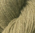 Shetland Moss