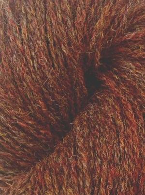 Shetland Redstart
